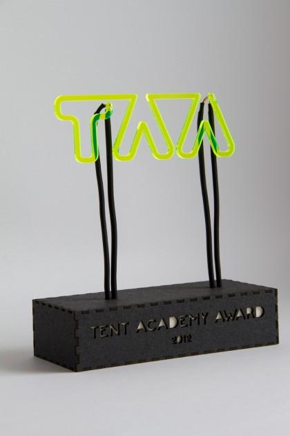 TAA_2012_award